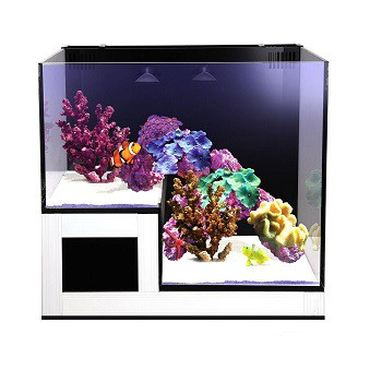 Nuvo Concept Abyss Panorama (75 L)